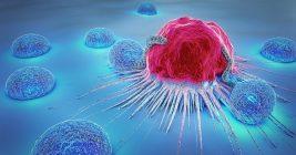 Adhesion Molecules Elisa Kits For Anti Mullerian Hormone