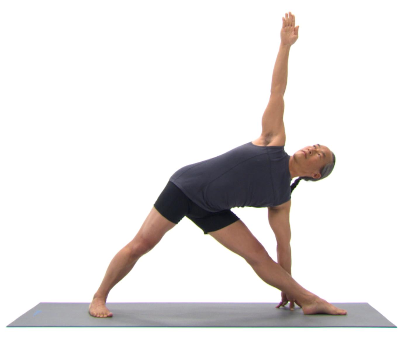 Discipline Your Body Through The Practice of Yoga Asana